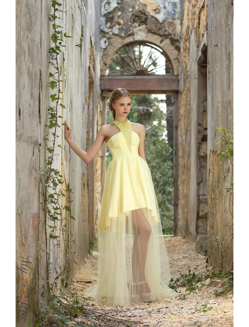 Theme Party and Ultimate Fashion Designer Dresses Collection