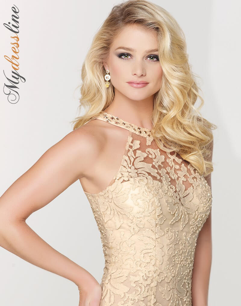 Social Occasions by Mon Cheri 115862 Evening Dress ~LOWEST PRICE ...